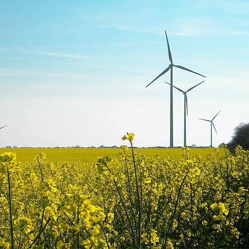 Wind energy Bulgariy | Queisser